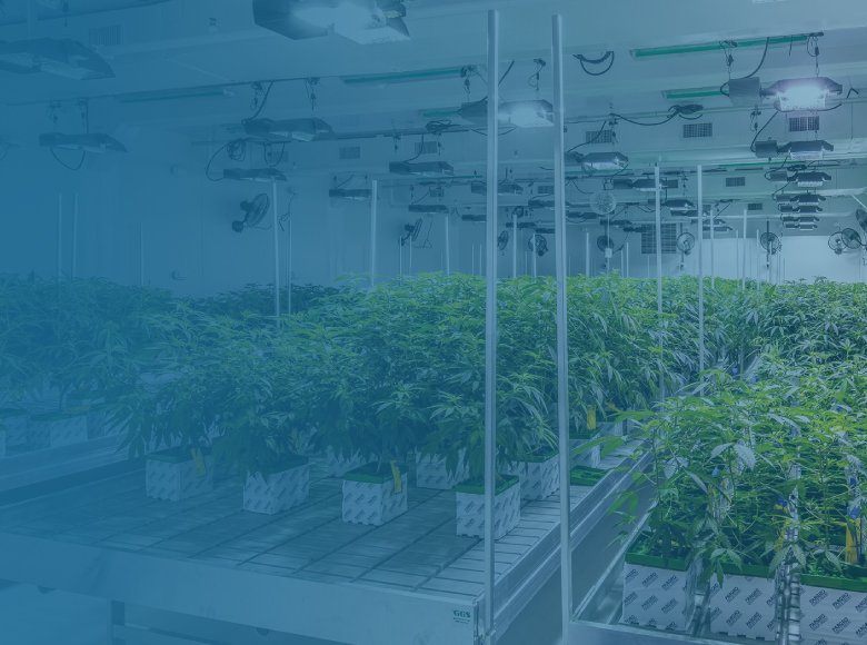 arch-7-cannabis-architect-louisiana-mississppi